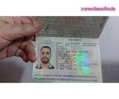 Canadian Passport and Driver's License - Image 3/8