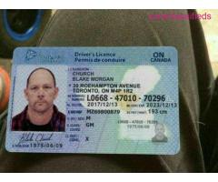 Canadian Passport and Driver's License - Image 5/8