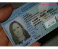 Canadian Passport and Driver's License - Image 8/8